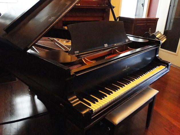 Piano Room - 1881 Steinway grand
