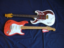 Auction guitars