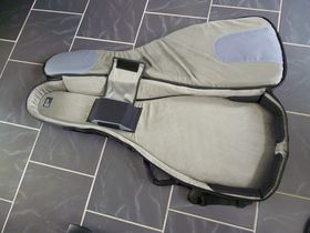 Mono M80 guitar case review