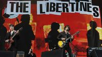 Gary Powell: Libertines reunion not about the money