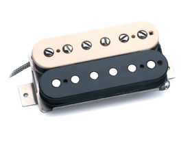 TG203 Audio: Seymour Duncan Alnico II Pro Slash signature pickups