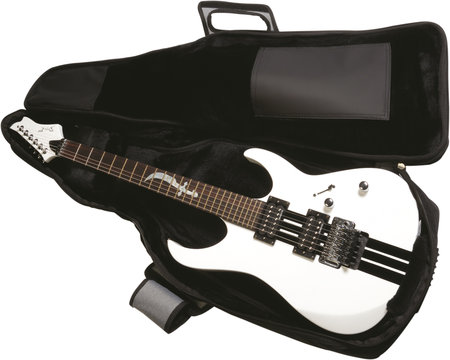 Buying your first guitar - guitar gigbag
